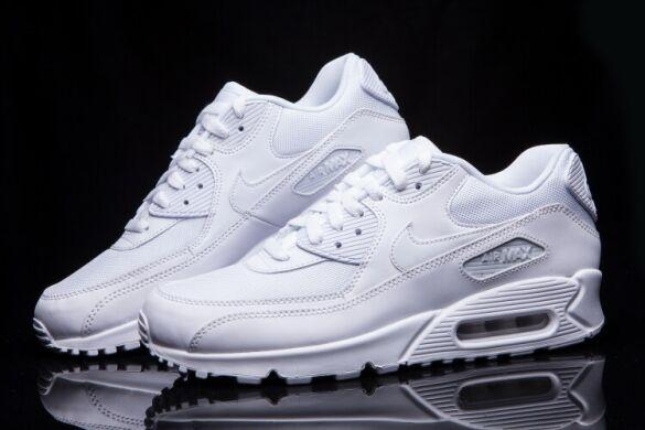 Кросівки Nike Air Max 90 Essential