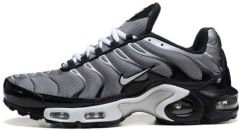 "Кроссовки Nike Air Max Plus TN ""Gray/White"""