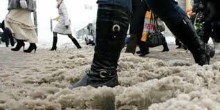 Види жіночого взуття для комфортної зими b24b177b48d6a